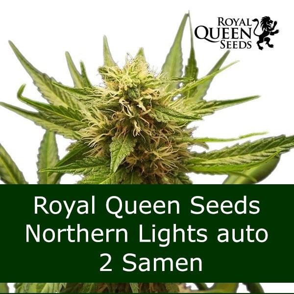 2 Seeds NL auto - RQS Bonus