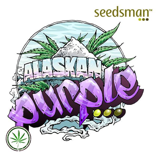 Auto Alaskan Purple