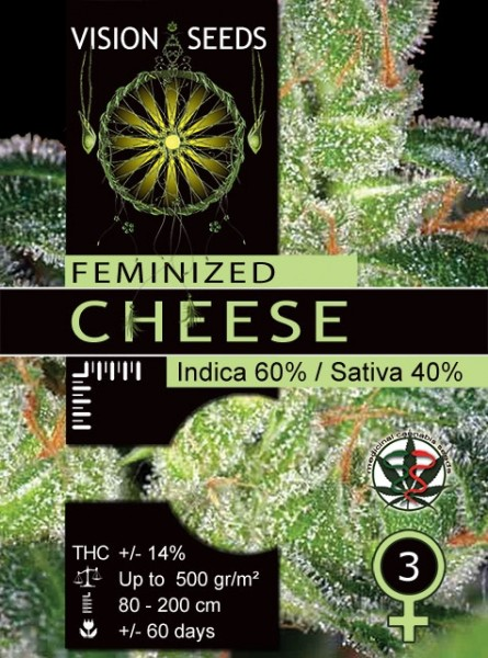Gaudas Grass fem before Cheese