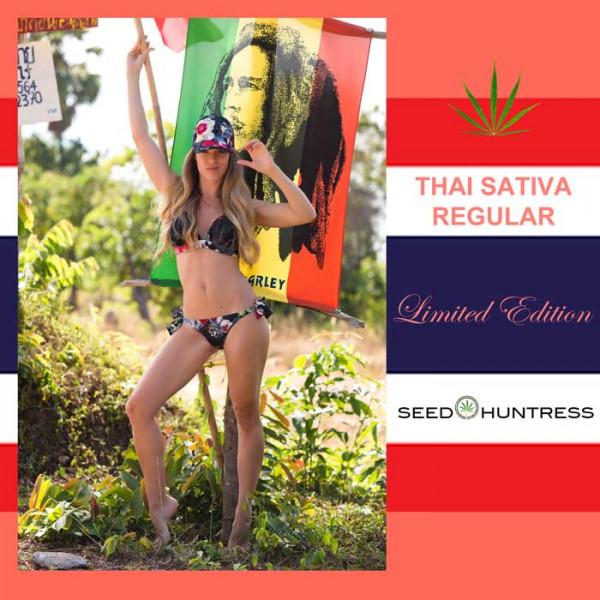 Thai Sativa * Limited Edition * 6 x regular