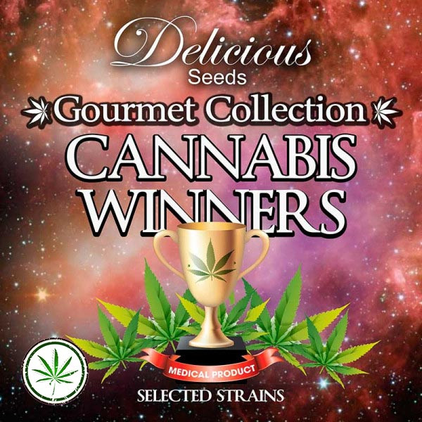 Gourmet Collection Cannabis Winners 2
